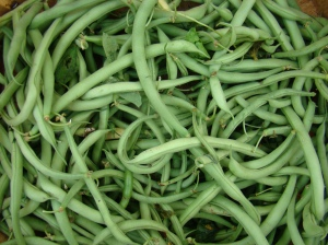Green beans, from buffalo-niagaragardening.com